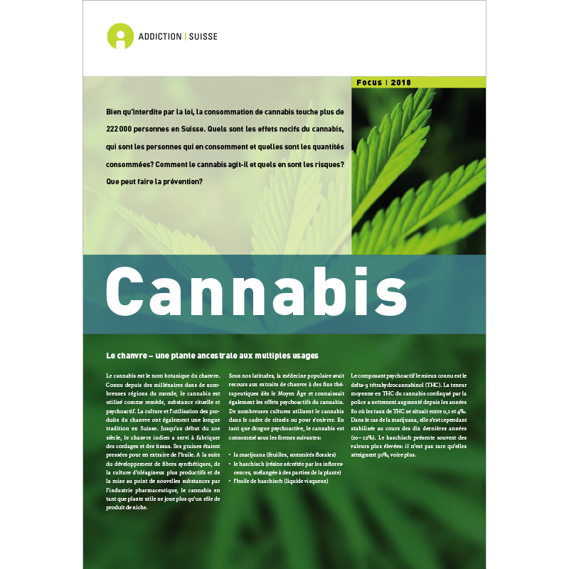 Im Fokus - Cannabis