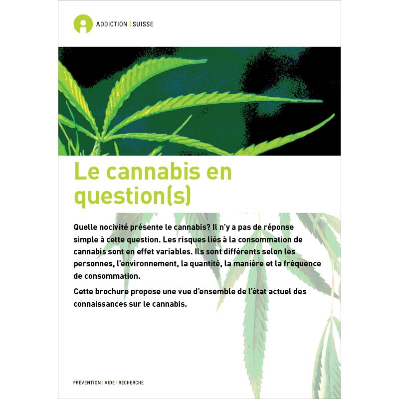 Dépendances n° 05 : La politique des dépendances: analyses, propositions, perspectives,
